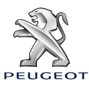 Sterowniki ECU do PEUGEOT